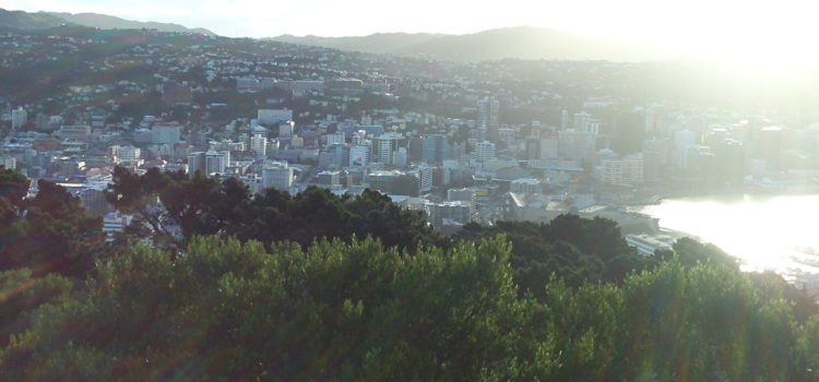 Wellington Gay Accommodation – Misterbnb